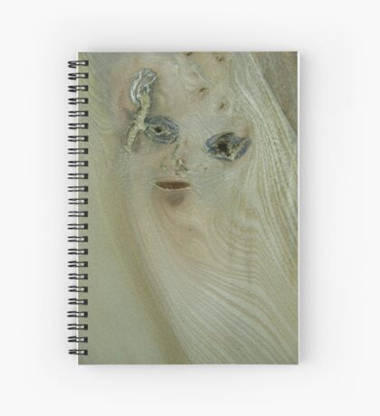 the girl in the wood (resemblance) Spiral Notebook