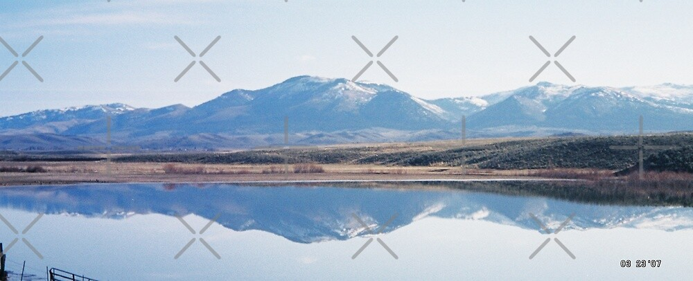 Unity Lake Reflection by Betty  Town Duncan