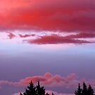 Red Sky at Night by John Brotheridge