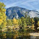 Fall Reflections Yosemite by CanOverland