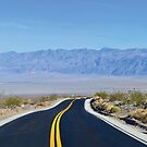 Death Valley Roadway by CanOverland
