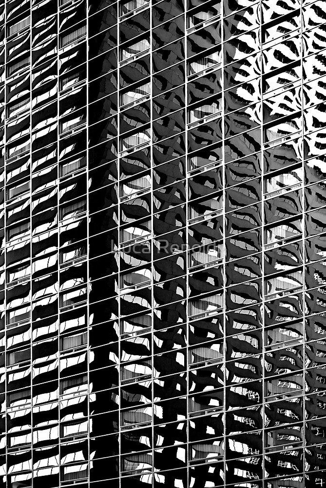 Reflected Grid by Luca Renoldi