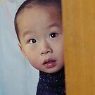 CHINESE WONDER by mc27