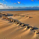 Golden RedBubble Beach..... by Adri  Padmos