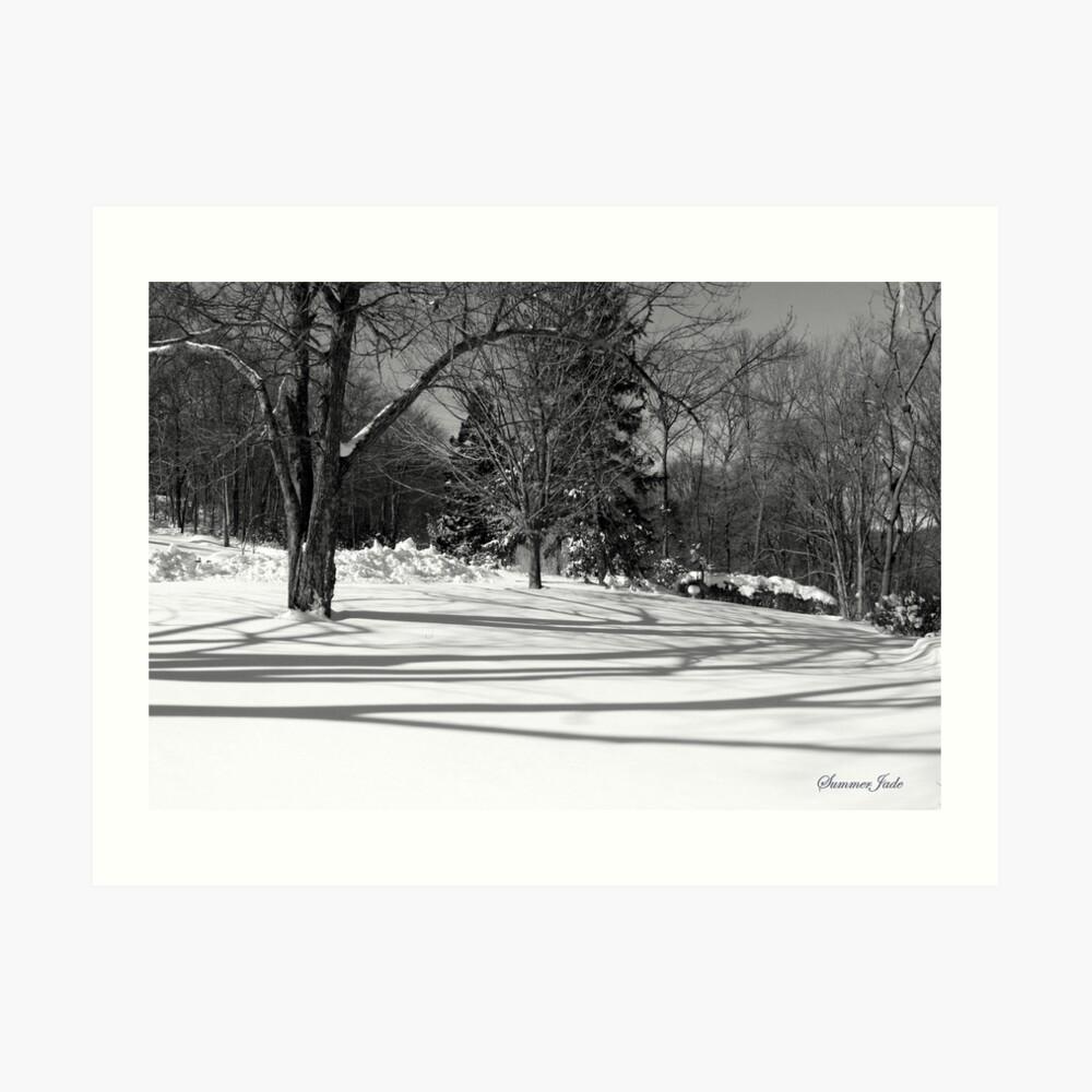 That Cold Winter Sun ~ On Snow Art Print