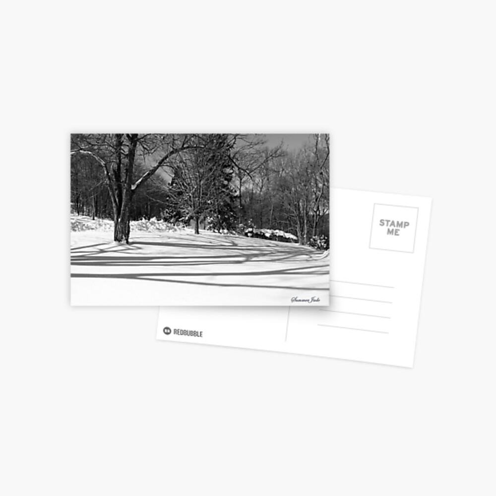 That Cold Winter Sun ~ On Snow Postcard