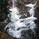 Multnomah Falls , Portland,Or by Jennifer Hulbert-Hortman