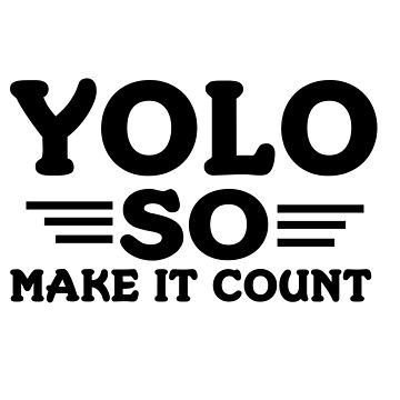 YOLO SO MAKE IT COUNT  by birdeyes