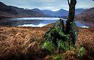 Loch Arklet by David Mould