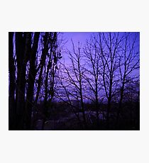 December evening. Photographic Print