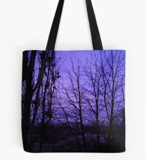 December evening. Tote Bag