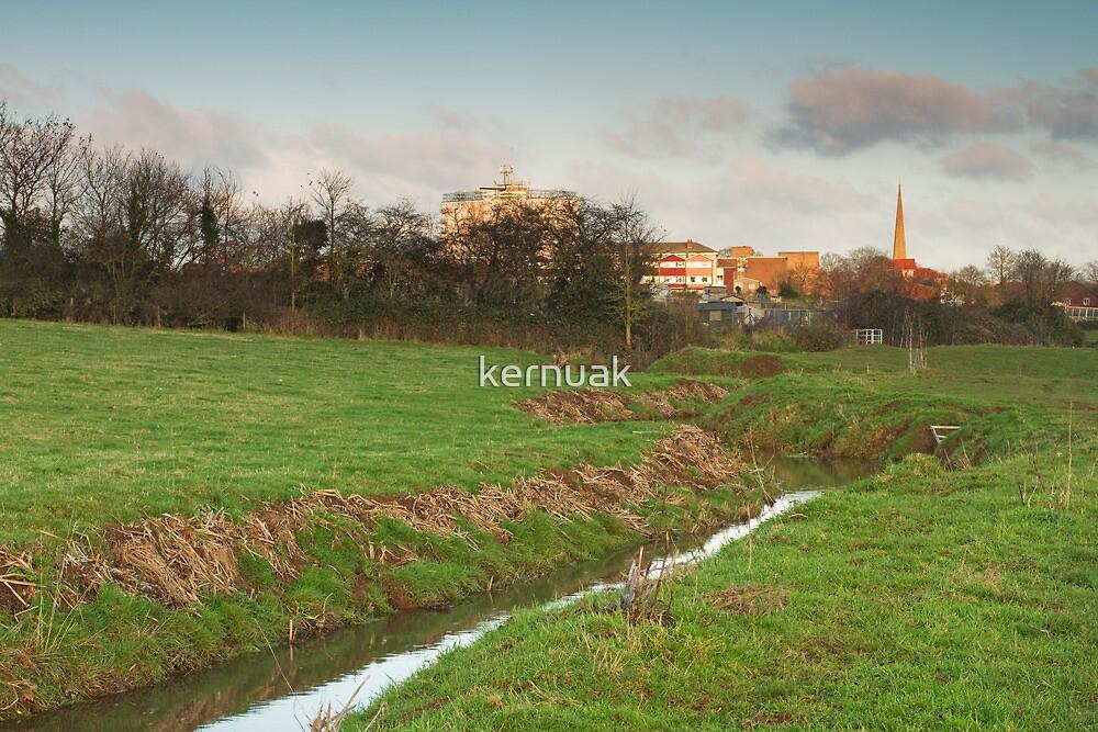 Durleigh Brook by kernuak