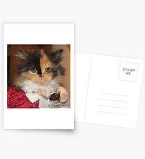 So Calm Postcards
