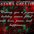 Happy Holidays Card 1 by plunder