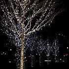 Lights by Amy Francen
