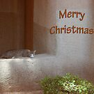 A Cat's Christmas by Violette Grosse