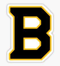 Bruins winter classic Sticker