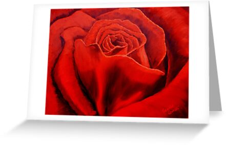 Red Rose by sesillie