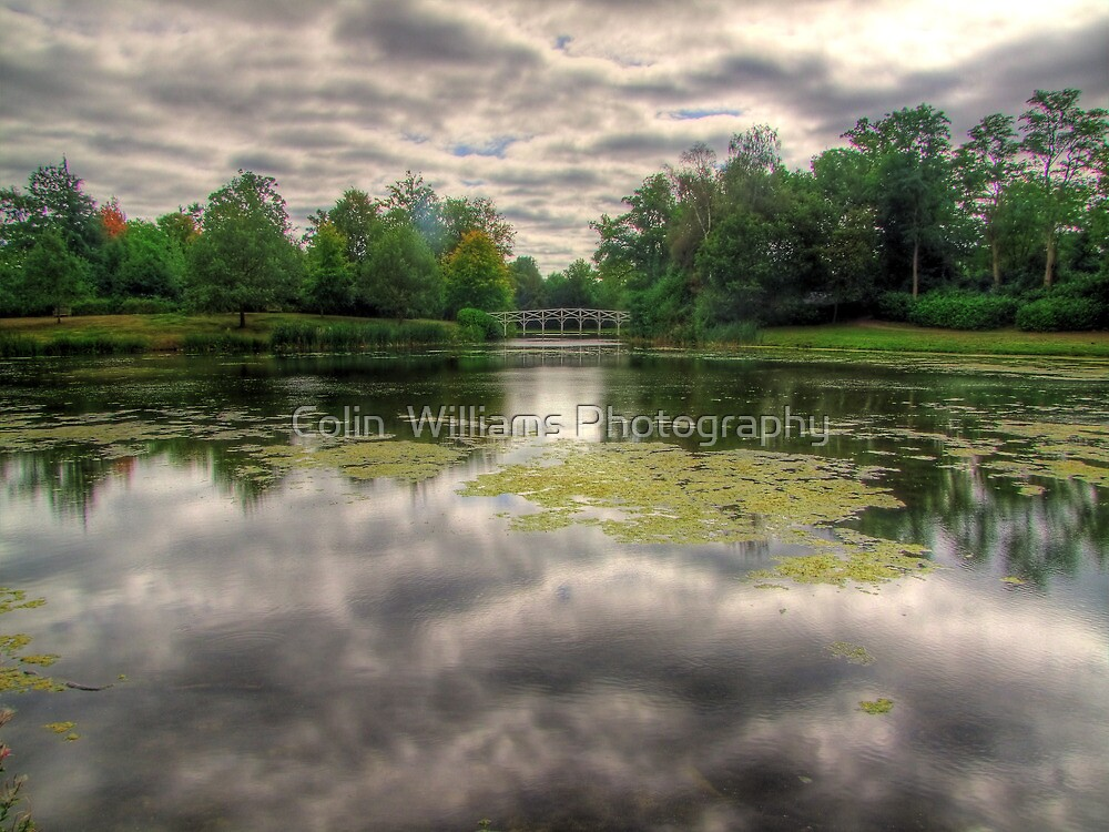 The Chinese Bridge - Painshill Park - HDR by Colin  Williams Photography