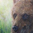 Brown Bear (Ursus arctos arctos) by elinjohnsen