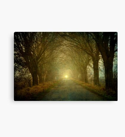 The light is coming Canvas Print