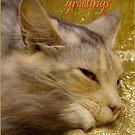 Season's greetings card by AleFletcher