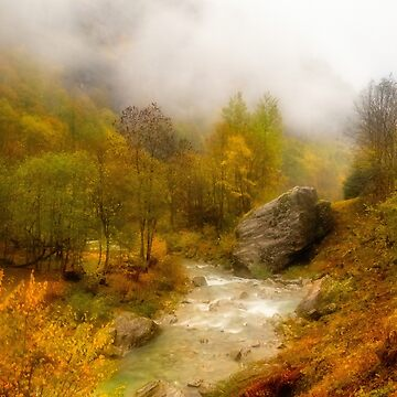 Mountain stream among fall colors by birba