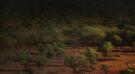Quilpie Plains Sunrise © Vicki Ferrari Photography by Vicki Ferrari