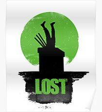 Lost Zoro Poster
