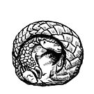 Pangolin Ball by sneercampaign