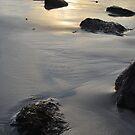 PER MARE - PER TERRAM by NordicBlackbird