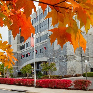 Virginia Tech's Lane Stadium in the Fall by ethancandy