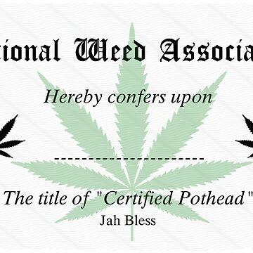Certificate of pothead by lucasbrondi