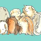 Happy Herd of Guinea Pigs by Alittlebitiffy