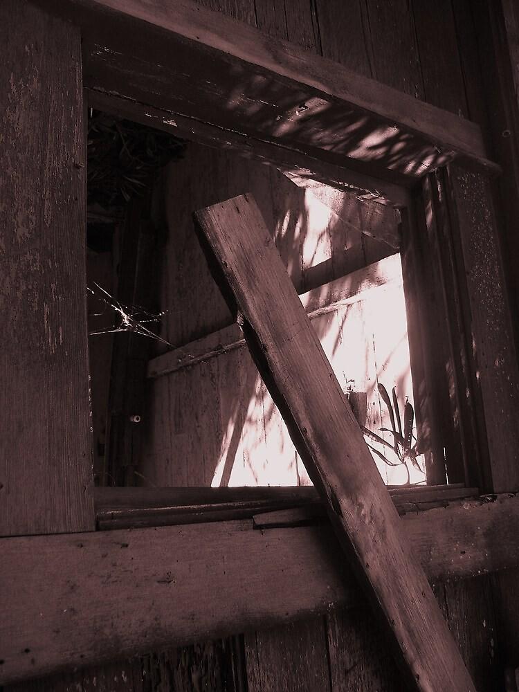 Hanapepe house II by Diana Forgione