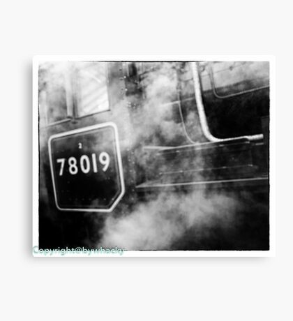 78019 gets steamed up Canvas Print