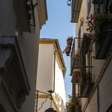 Gallivanting Around Seville is Pure Charm - Tiny Balconies with Flowers by GeorgiaM