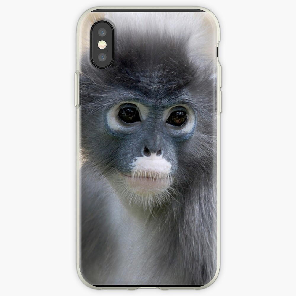 Dusky Leaf Monkey - (Trachypithecus obscurus) iPhone Case & Cover