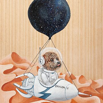 Perro caniche - Misión a Marte - Spacex - Perro espacial de Ruta