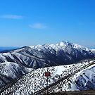 view to Mt Feathertop by jayview