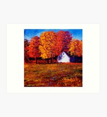 White House in the Maples Art Print