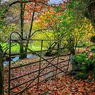 Gate to Autumn by Adrian Evans