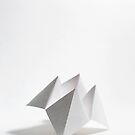 Fortune Teller... by Catherine MacBride