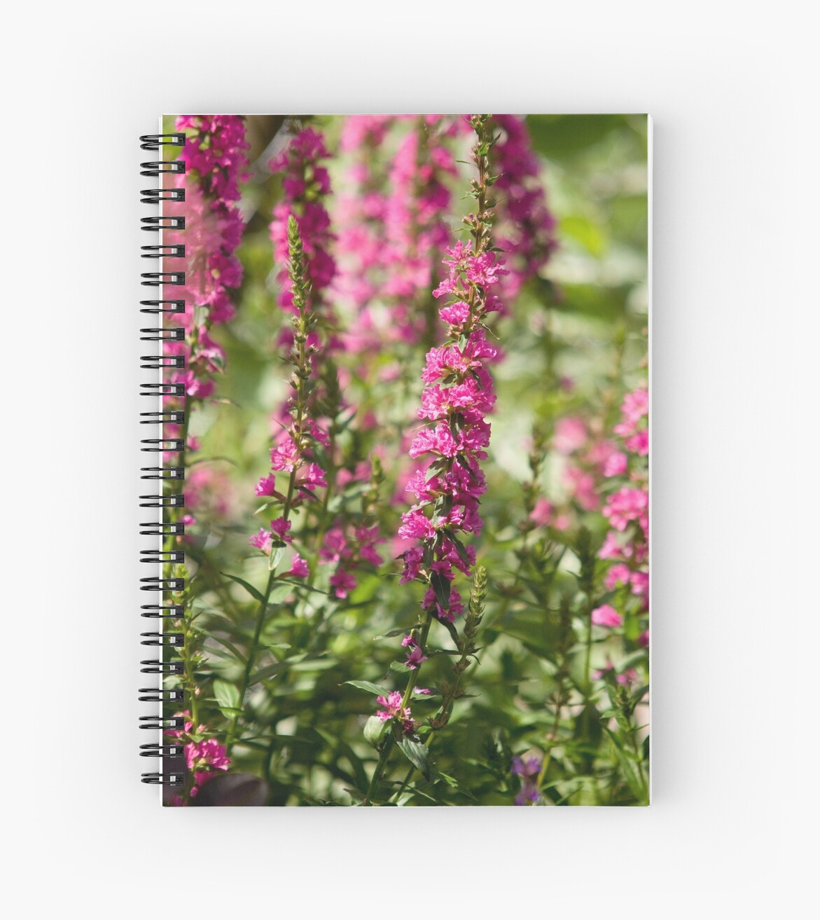 Tall Pink Flowers Spiral Notebooks By Mark Wuttke Redbubble