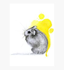 Hamster Watercolour Photographic Print