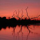 Dusk, Ord River, Western Australia by Adrian Paul