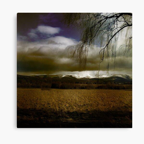 Cairngorm Canvas Print