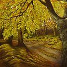 a fairy tale forest by edisandu