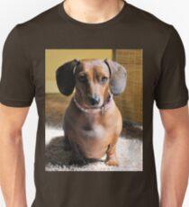 Dachsie Unisex T-Shirt