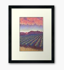 Vineyard Sunset Framed Print